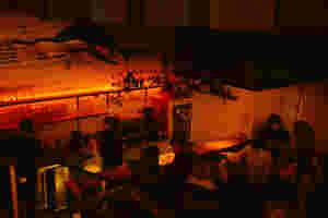 In Rot und Orange erleuchtet der Raum. Menschen stehen an der Bar. Die Barkeeper bereiten die Getränke vor. Hoch zu kopf thront ein Hammerhaifisch über den Gästen.
