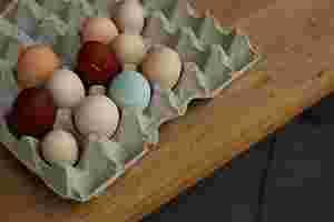 Zu sehen sind verschiedenfarbige Eier.